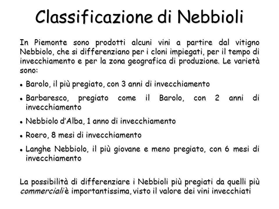 In Piemonte sono prodotti alcuni vini a partire dal vitigno Nebbiolo, che si differenziano per i cloni impiegati, per il tempo di invecchiamento e per la zona geografica di produzione.