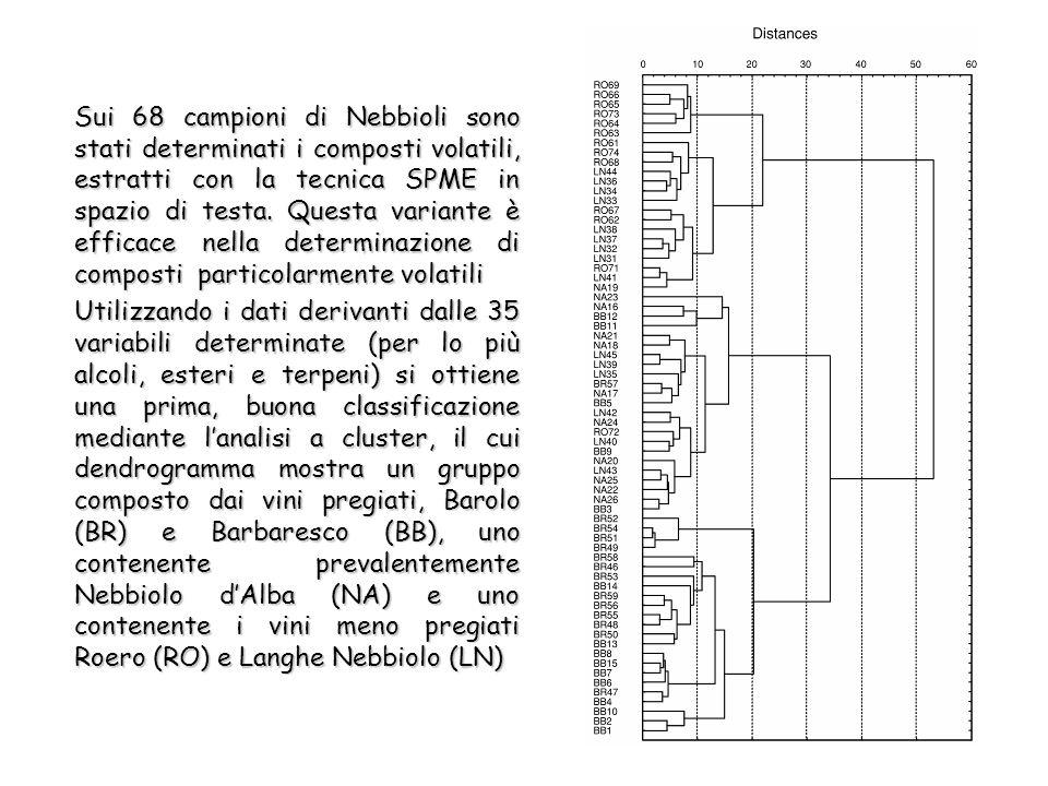 Sui 68 campioni di Nebbioli sono stati determinati i composti volatili, estratti con la tecnica SPME in spazio di testa.