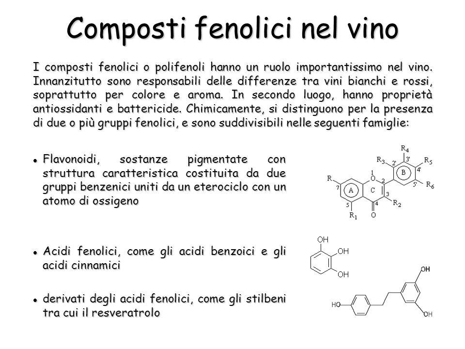I composti fenolici o polifenoli hanno un ruolo importantissimo nel vino.
