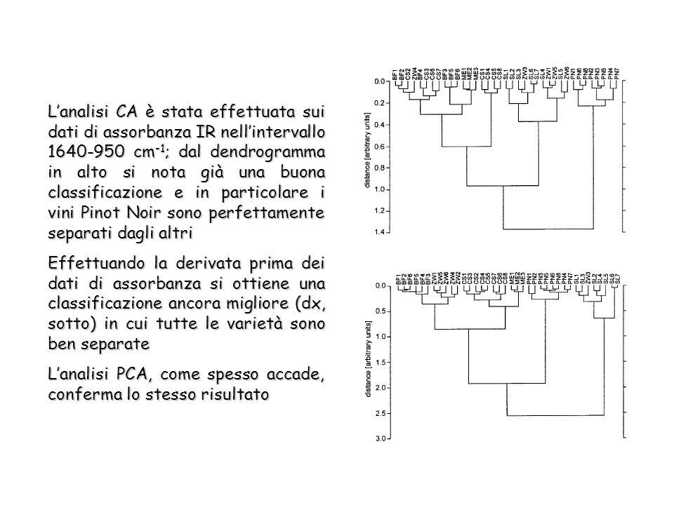 Lanalisi CA è stata effettuata sui dati di assorbanza IR nellintervallo 1640-950 cm -1 ; dal dendrogramma in alto si nota già una buona classificazione e in particolare i vini Pinot Noir sono perfettamente separati dagli altri Effettuando la derivata prima dei dati di assorbanza si ottiene una classificazione ancora migliore (dx, sotto) in cui tutte le varietà sono ben separate Lanalisi PCA, come spesso accade, conferma lo stesso risultato