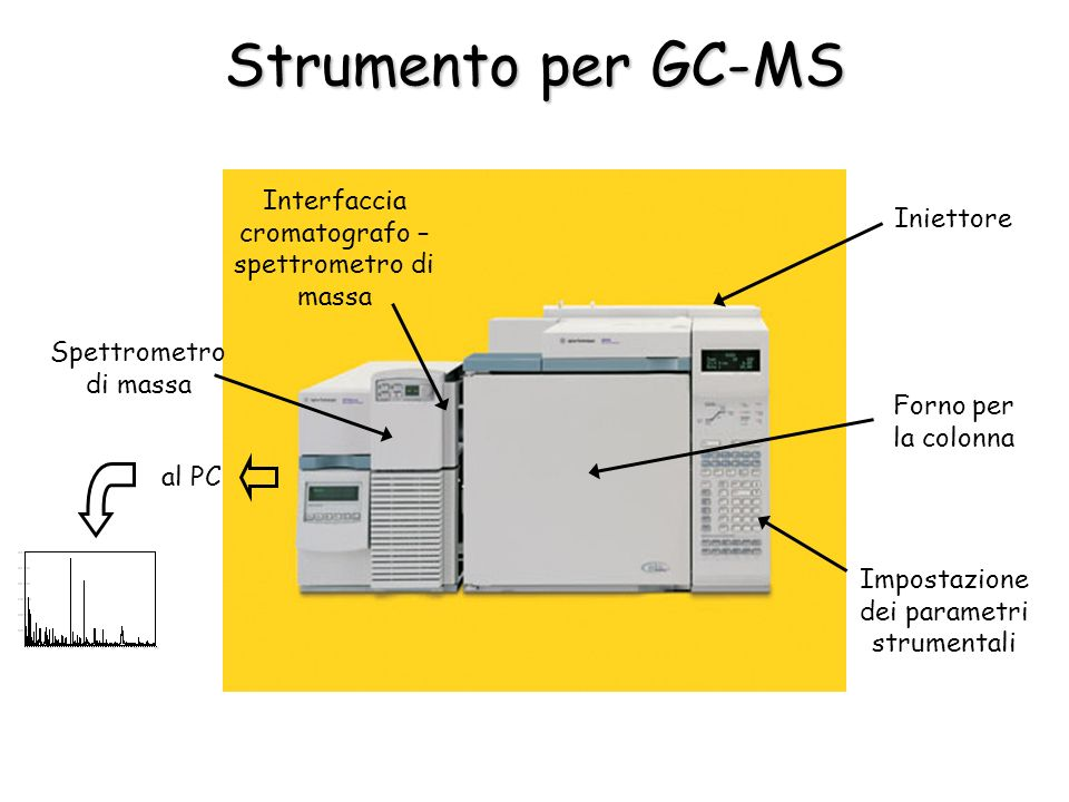 Strumento per GC-MS Forno per la colonna Iniettore Impostazione dei parametri strumentali Interfaccia cromatografo – spettrometro di massa Spettrometro di massa al PC