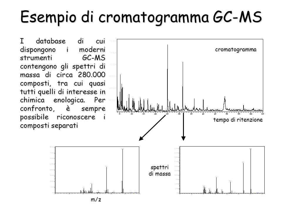 cromatogramma tempo di ritenzione spettri di massa m/z Esempio di cromatogramma GC-MS I database di cui dispongono i moderni strumenti GC-MS contengono gli spettri di massa di circa 280.000 composti, tra cui quasi tutti quelli di interesse in chimica enologica.