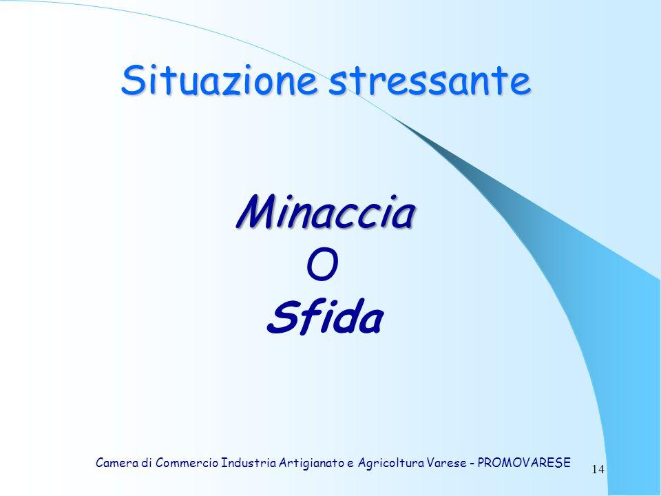 14 Minaccia O Sfida Situazione stressante Camera di Commercio Industria Artigianato e Agricoltura Varese - PROMOVARESE
