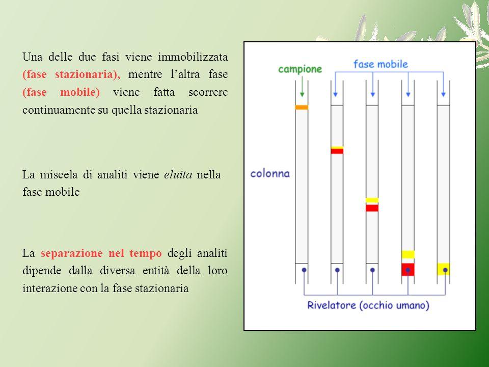 La miscela di analiti viene eluita nella fase mobile Una delle due fasi viene immobilizzata (fase stazionaria), mentre laltra fase (fase mobile) viene