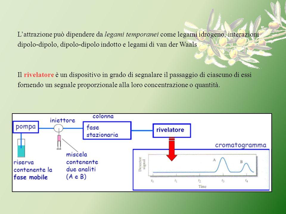 Il rivelatore è un dispositivo in grado di segnalare il passaggio di ciascuno di essi fornendo un segnale proporzionale alla loro concentrazione o qua