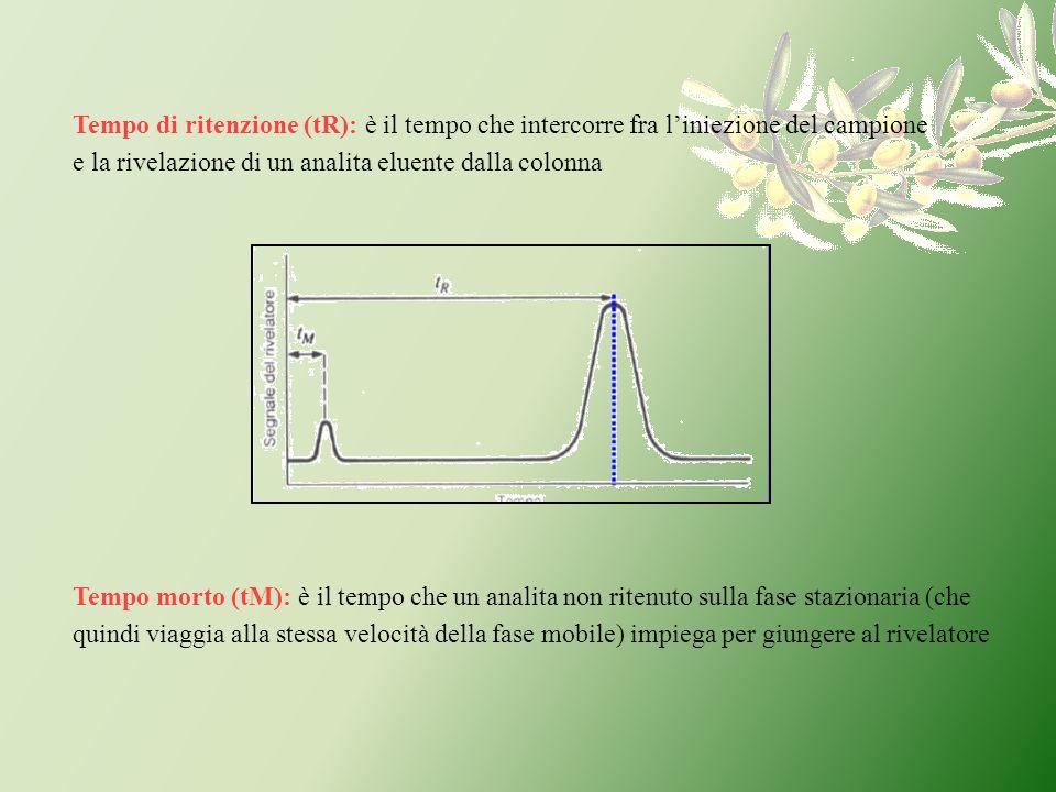 Tempo di ritenzione (tR): è il tempo che intercorre fra liniezione del campione e la rivelazione di un analita eluente dalla colonna Tempo morto (tM):