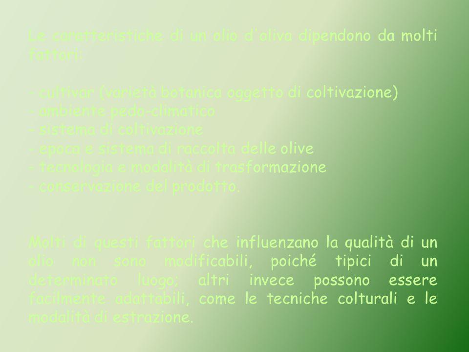 Le caratteristiche di un olio d'oliva dipendono da molti fattori: - cultivar (varietà botanica oggetto di coltivazione) - ambiente pedo-climatico - si