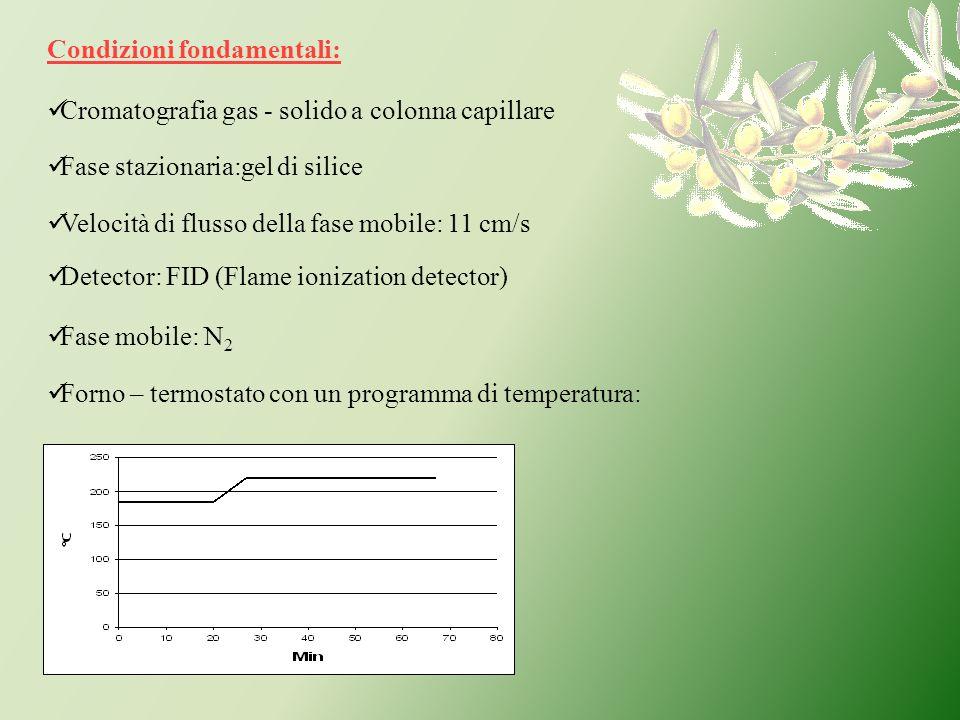 Condizioni fondamentali: Cromatografia gas - solido a colonna capillare Fase stazionaria:gel di silice Fase mobile: N 2 Forno – termostato con un prog