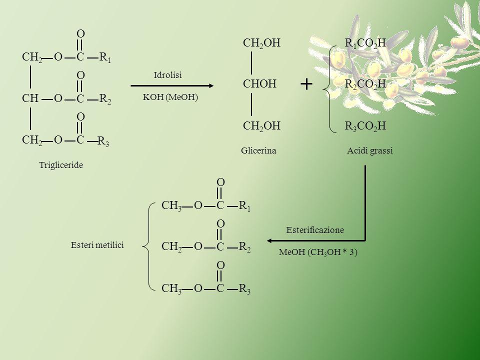 CR1R1 R2R2 R3R3 C C O OCH 2 OCH O O OCH 2 Idrolisi KOH (MeOH) CH 2 OH CHOH CH 2 OH Trigliceride Glicerina R 1 CO 2 H R 2 CO 2 H R 3 CO 2 H Acidi grass