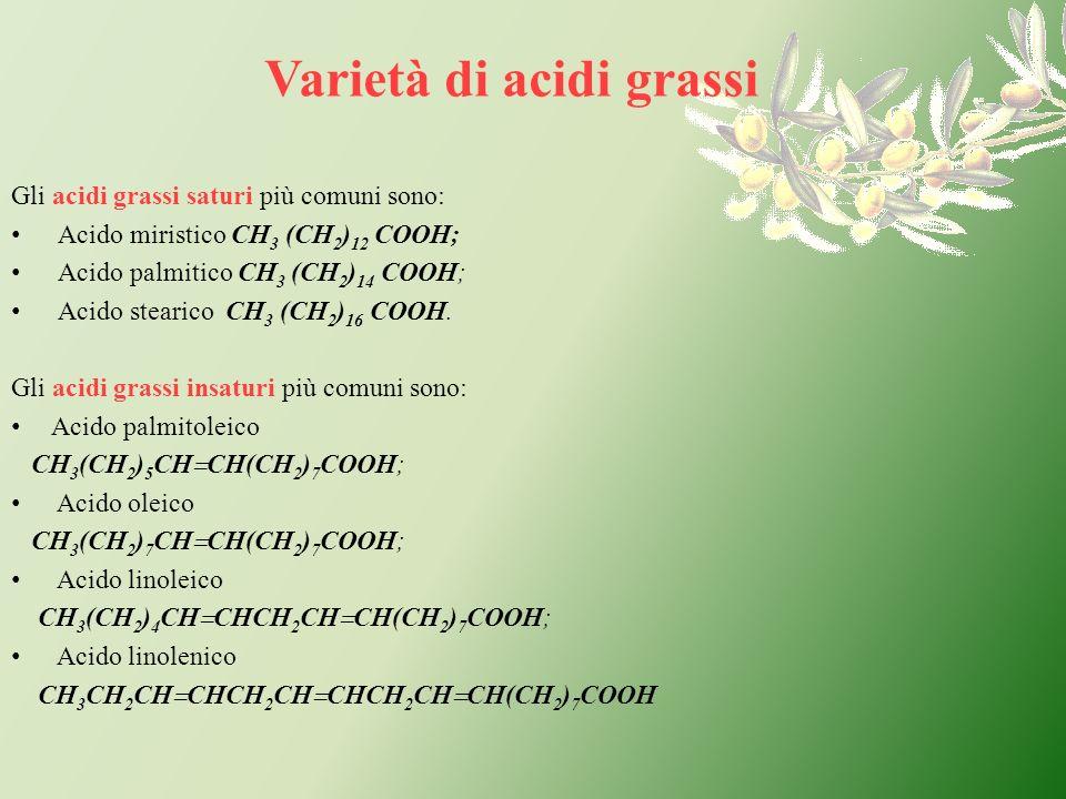Gli acidi grassi saturi più comuni sono: Acido miristico CH 3 (CH 2 ) 12 COOH; Acido palmitico CH 3 (CH 2 ) 14 COOH; Acido stearico CH 3 (CH 2 ) 16 CO