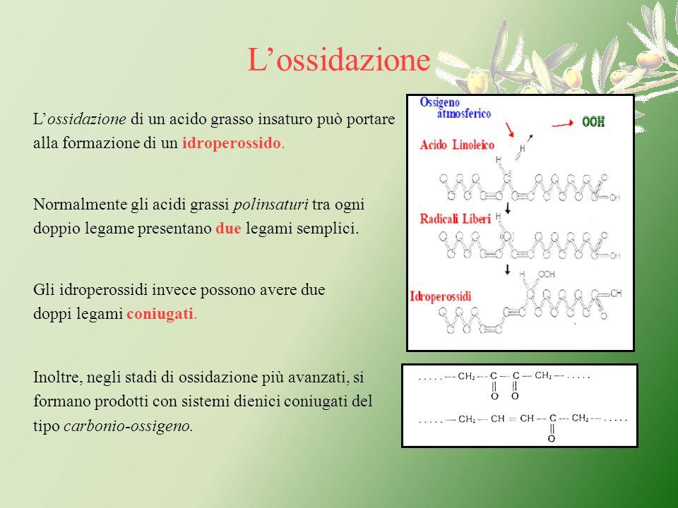 Lossidazione di un acido grasso insaturo può portare alla formazione di un idroperossido. Normalmente gli acidi grassi polinsaturi tra ogni doppio leg