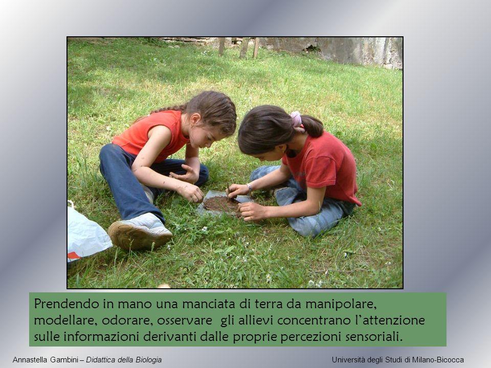 Annastella Gambini – Didattica della Biologia Università degli Studi di Milano-Bicocca Prendendo in mano una manciata di terra da manipolare, modellar