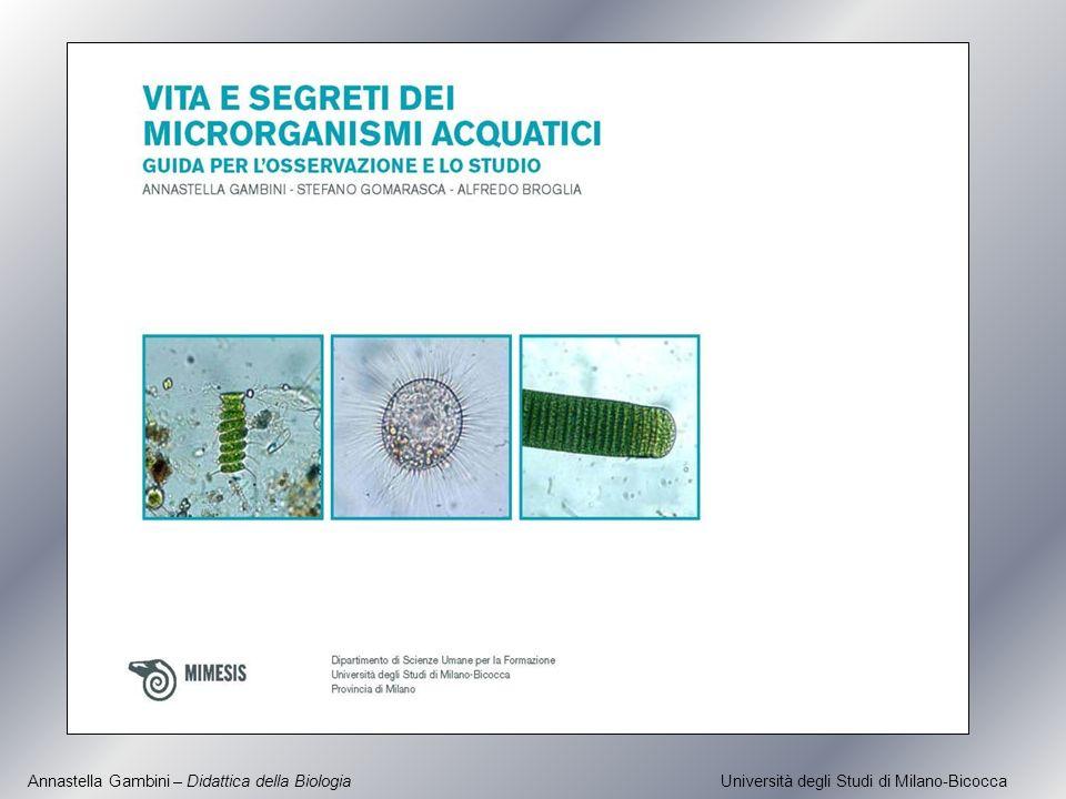 Annastella Gambini – Didattica della Biologia Università degli Studi di Milano-Bicocca