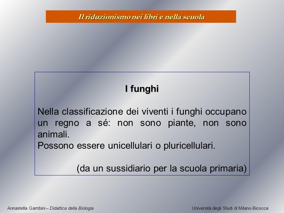 Annastella Gambini – Didattica della Biologia Università degli Studi di Milano-Bicocca I funghi Nella classificazione dei viventi i funghi occupano un