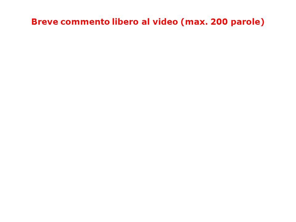 Breve commento libero al video (max. 200 parole)