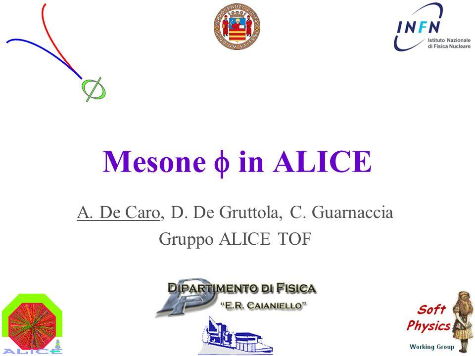 Mesone in ALICE A. De Caro, D. De Gruttola, C. Guarnaccia Gruppo ALICE TOF