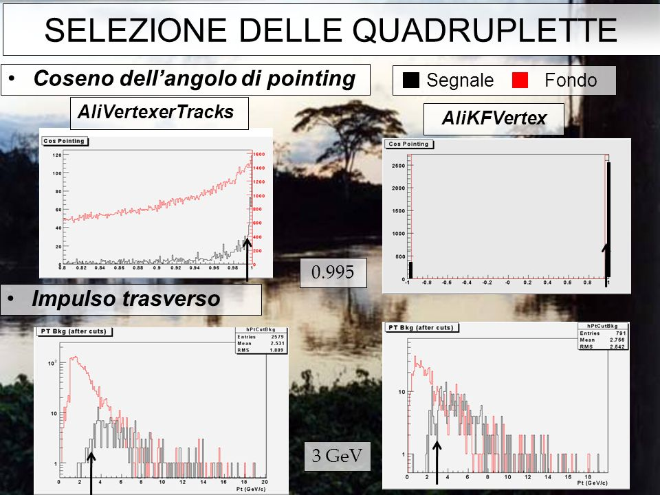 Impulso trasverso Coseno dellangolo di pointing AliVertexerTracks AliKFVertex Segnale Fondo 0.995 3 GeV SELEZIONE DELLE QUADRUPLETTE