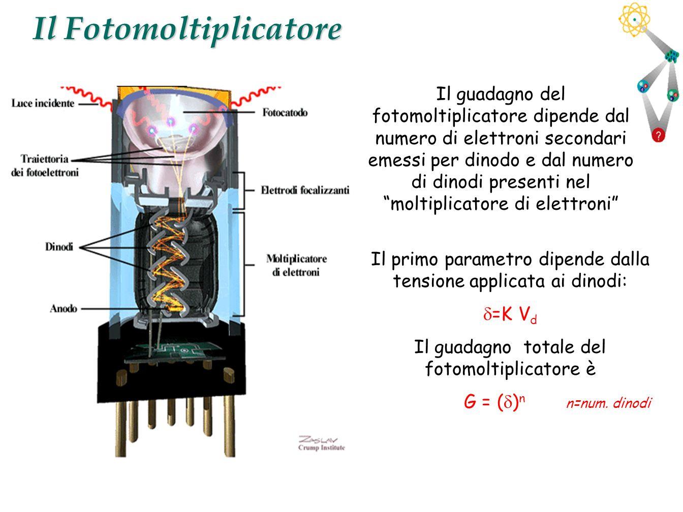 13 Il Fotomoltiplicatore Il primo parametro dipende dalla tensione applicata ai dinodi: =K V d Il guadagno totale del fotomoltiplicatore è G = ( ) n n