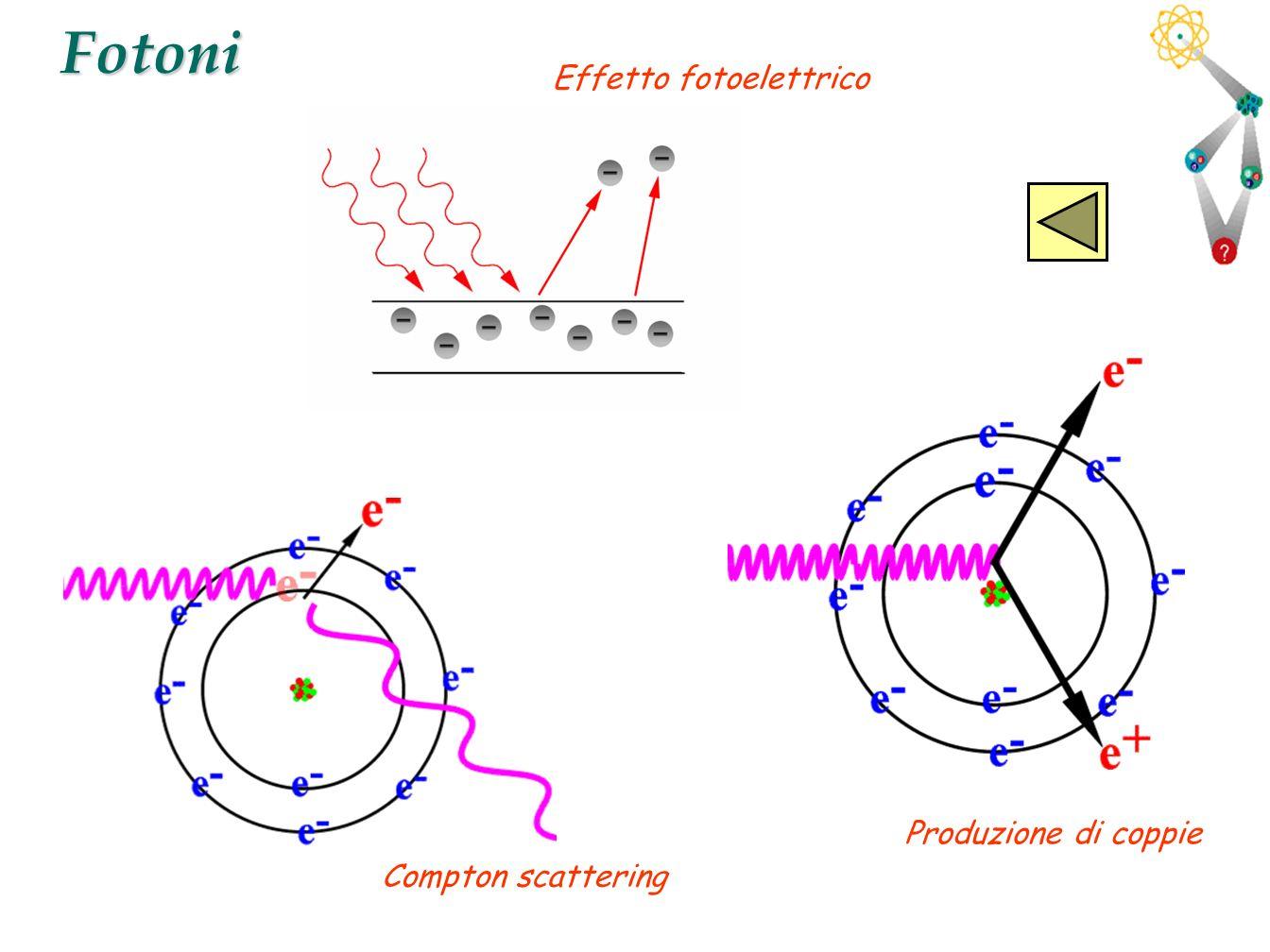 42Fotoni Effetto fotoelettrico Produzione di coppie Compton scattering