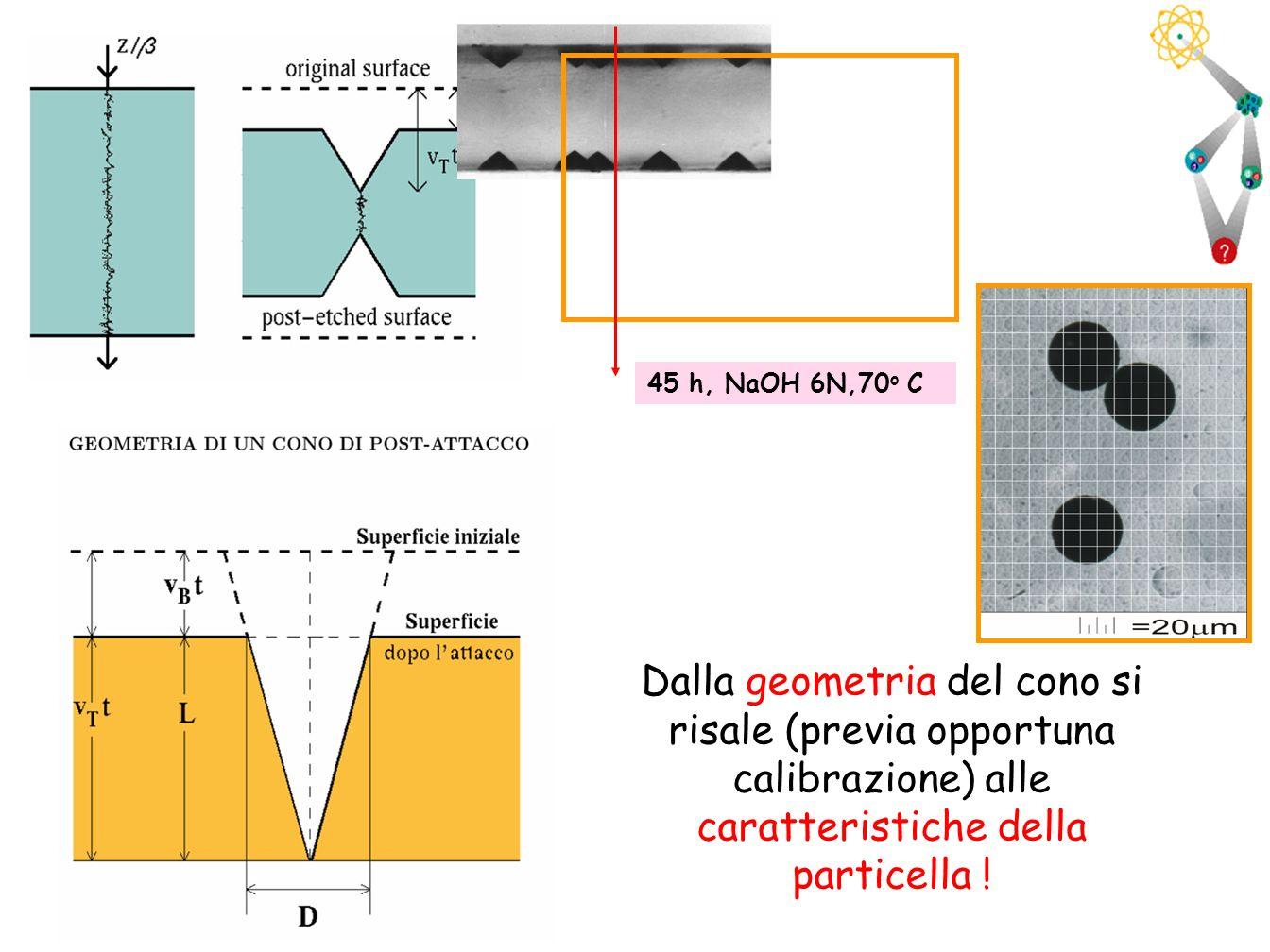 45 45 h, NaOH 6N,70 o C Dalla geometria del cono si risale (previa opportuna calibrazione) alle caratteristiche della particella !