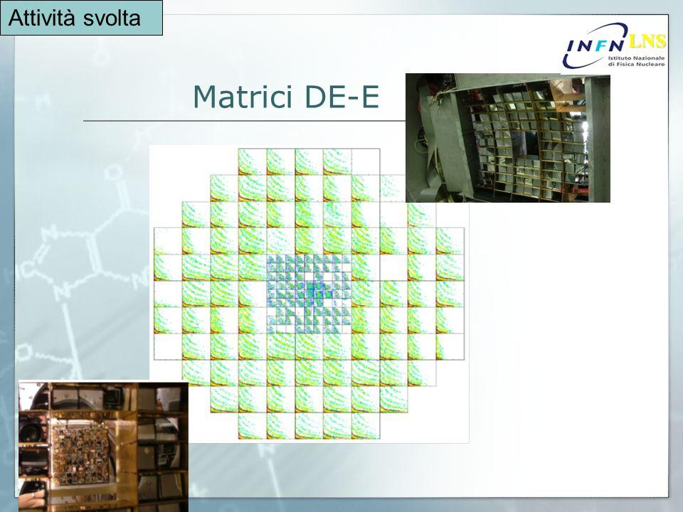 Matrici DE-E LNS LNS Attività svolta