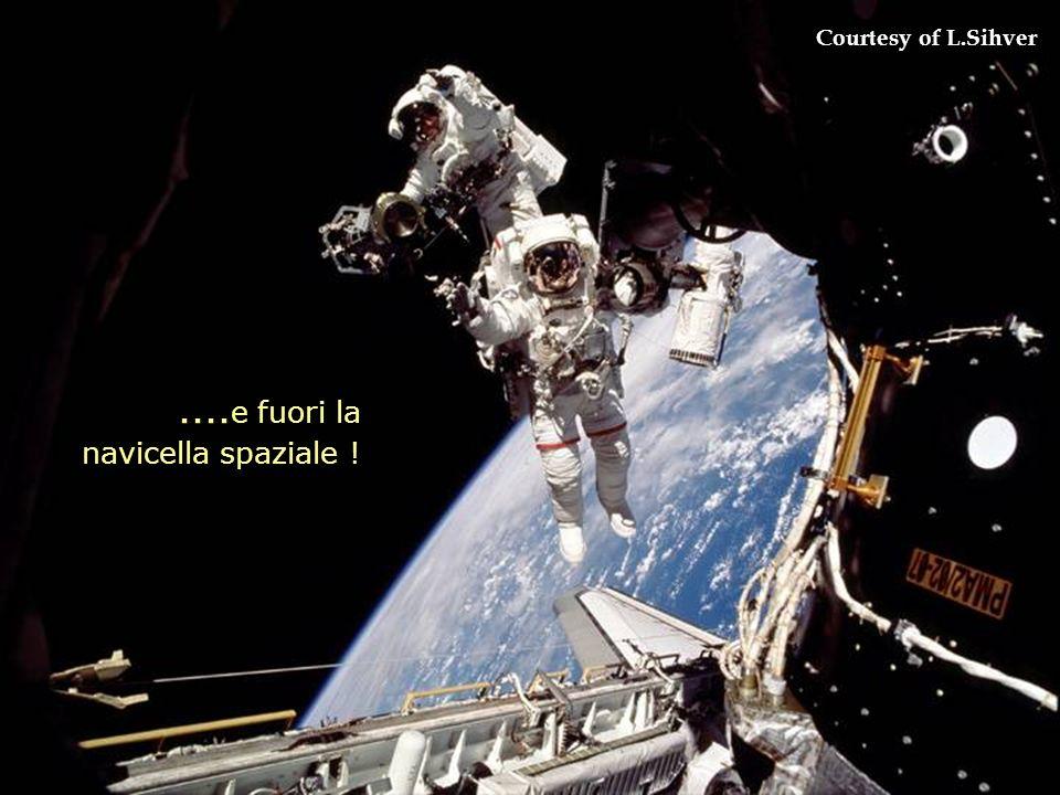 .... e fuori la navicella spaziale ! Courtesy of L.Sihver
