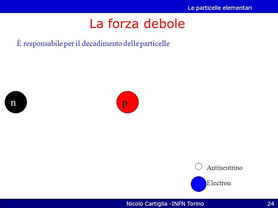 Le particelle elementari Nicolo Cartiglia -INFN Torino24 La forza debole np Antineutrino Electron È responsabile per il decadimento delle particelle