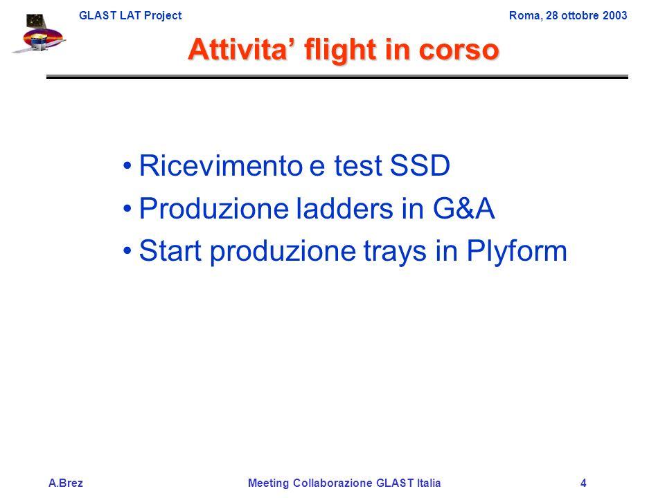 GLAST LAT ProjectRoma, 28 ottobre 2003 A.Brez Meeting Collaborazione GLAST Italia 4 Attivita flight in corso Ricevimento e test SSD Produzione ladders in G&A Start produzione trays in Plyform