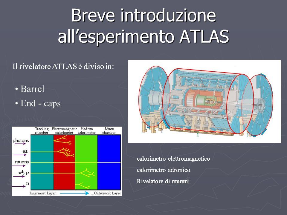 Breve introduzione allesperimento ATLAS End - caps Barrel calorimetro elettromagnetico calorimetro adronico Rivelatore di muoni Il rivelatore ATLAS è