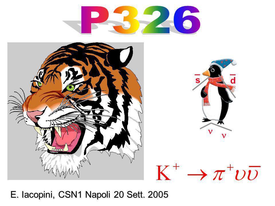 s d E. Iacopini, CSN1 Napoli 20 Sett. 2005