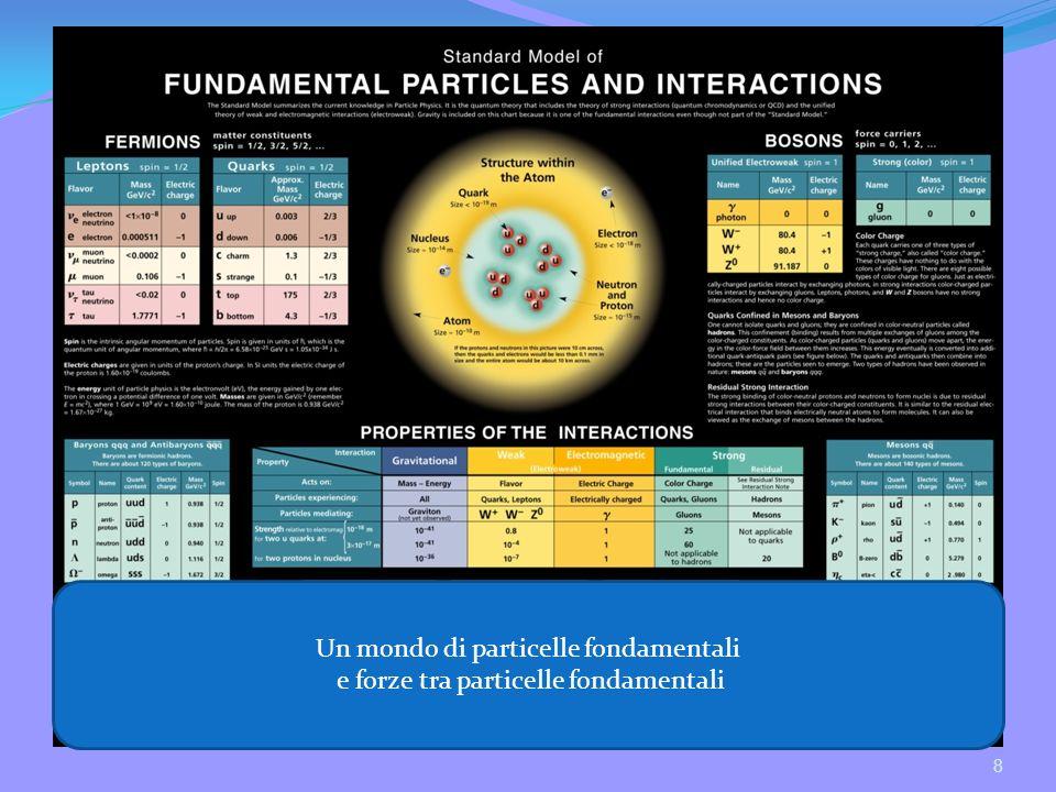 8 Un mondo di particelle fondamentali e forze tra particelle fondamentali