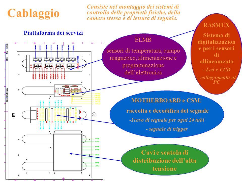 Cavi e scatola di distribuzione dellalta tensione Cablaggio ELMB sensori di temperatura, campo magnetico, alimentazione e programmazione dellelettroni