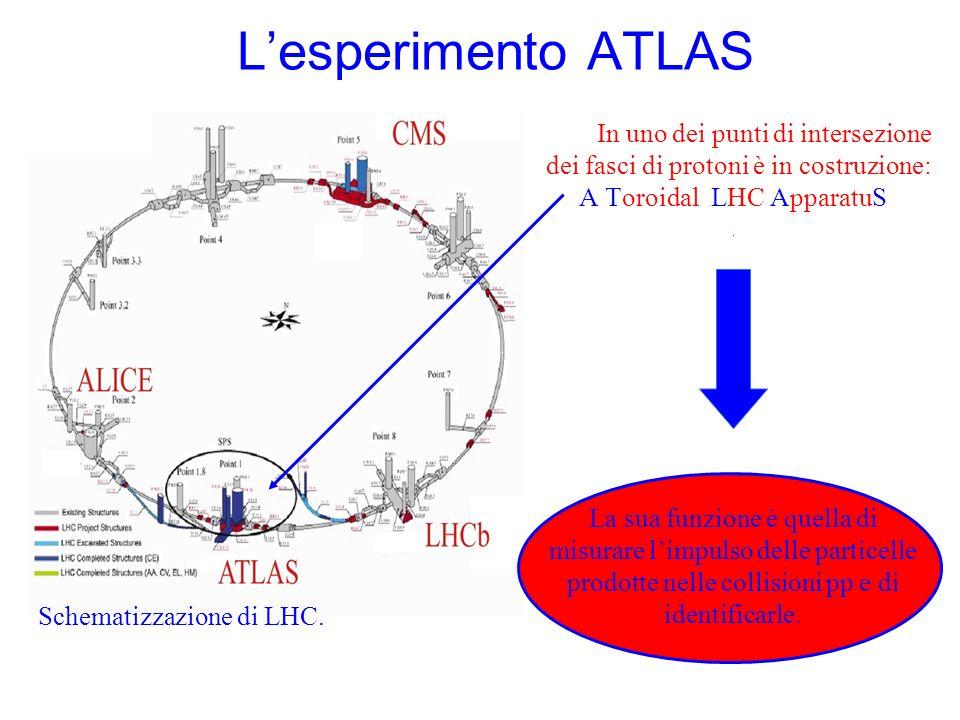 In uno dei punti di intersezione dei fasci di protoni è in costruzione: A Toroidal LHC ApparatuS. Lesperimento ATLAS La sua funzione è quella di misur