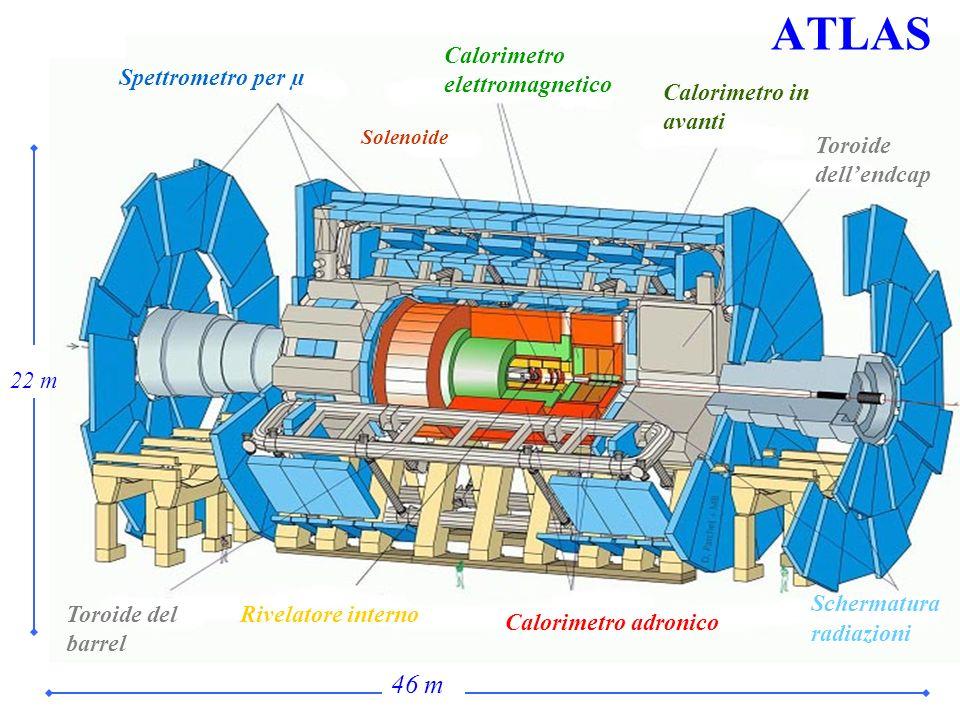 ATLAS Spettrometro per µ Solenoide Calorimetro elettromagnetico Calorimetro in avanti Toroide dellendcap Toroide del barrel Rivelatore interno Calorim