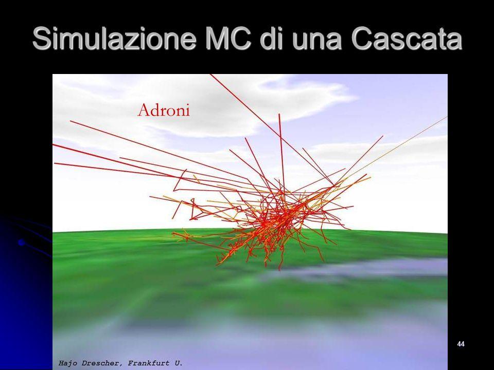 43 Simulazione MC di una Cascata Muoni