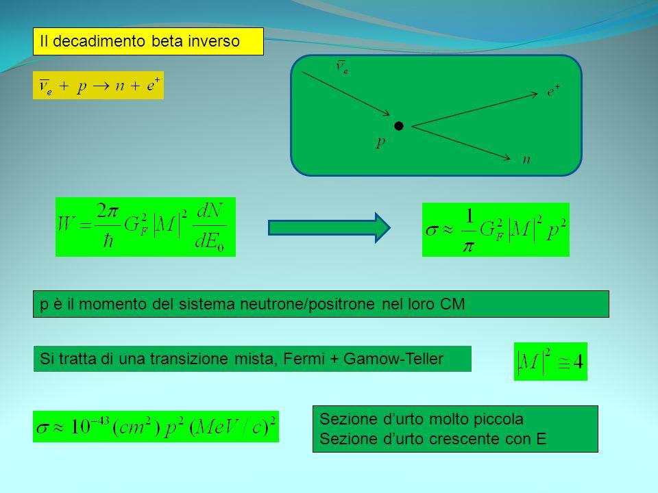 Il decadimento beta inverso p è il momento del sistema neutrone/positrone nel loro CM Si tratta di una transizione mista, Fermi + Gamow-Teller Sezione
