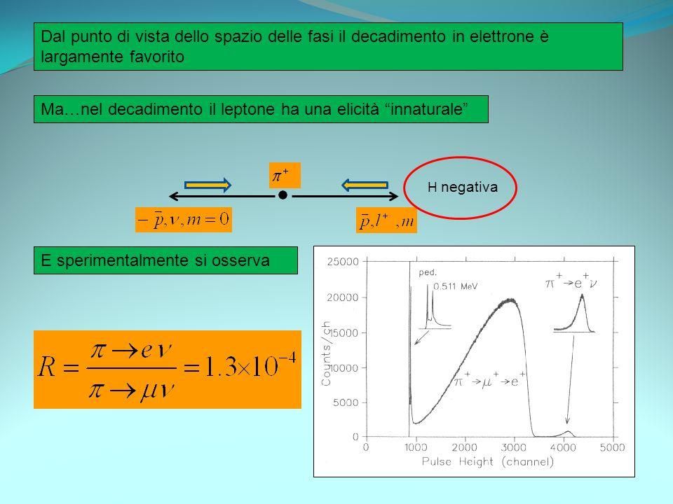 Dal punto di vista dello spazio delle fasi il decadimento in elettrone è largamente favorito Ma…nel decadimento il leptone ha una elicità innaturale H