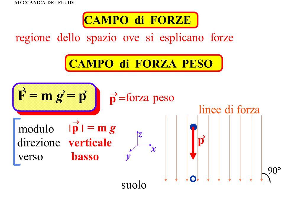 MECCANICA DEI FLUIDI CAMPO di FORZE regione dello spazio ove si esplicano forze CAMPO di FORZA PESO forza peso F = m g = p p = modulo direzione verso