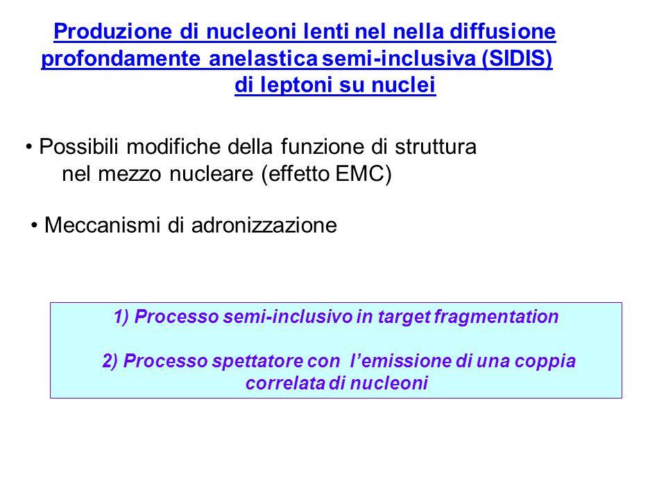 Produzione di nucleoni lenti nel nella diffusione profondamente anelastica semi-inclusiva (SIDIS) di leptoni su nuclei 1) Processo semi-inclusivo in target fragmentation 2) Processo spettatore con lemissione di una coppia correlata di nucleoni Possibili modifiche della funzione di struttura nel mezzo nucleare (effetto EMC) Meccanismi di adronizzazione