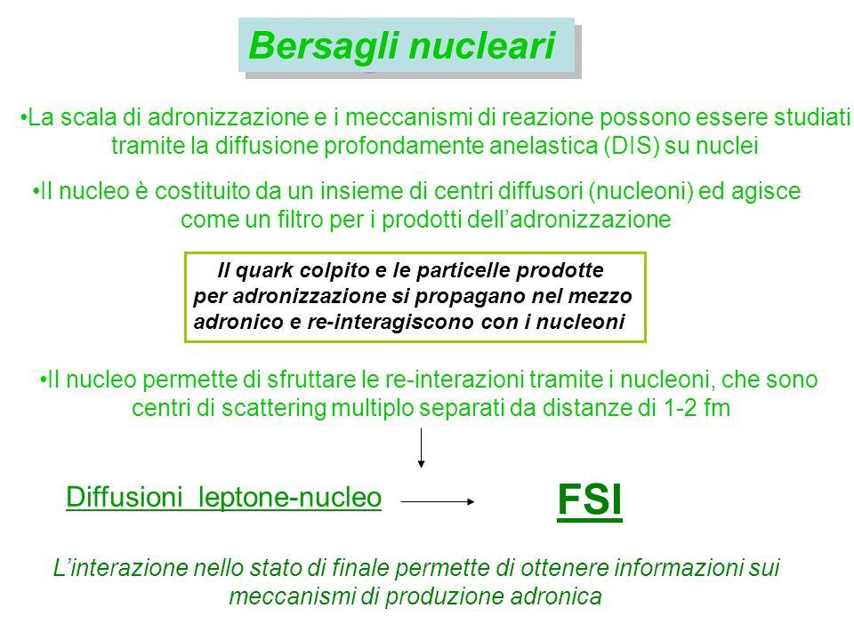 Bersagli nucleari Il quark colpito e le particelle prodotte per adronizzazione si propagano nel mezzo adronico e re-interagiscono con i nucleoni FSI Linterazione nello stato di finale permette di ottenere informazioni sui meccanismi di produzione adronica Diffusioni leptone-nucleo La scala di adronizzazione e i meccanismi di reazione possono essere studiati tramite la diffusione profondamente anelastica (DIS) su nuclei Il nucleo è costituito da un insieme di centri diffusori (nucleoni) ed agisce come un filtro per i prodotti delladronizzazione Il nucleo permette di sfruttare le re-interazioni tramite i nucleoni, che sono centri di scattering multiplo separati da distanze di 1-2 fm
