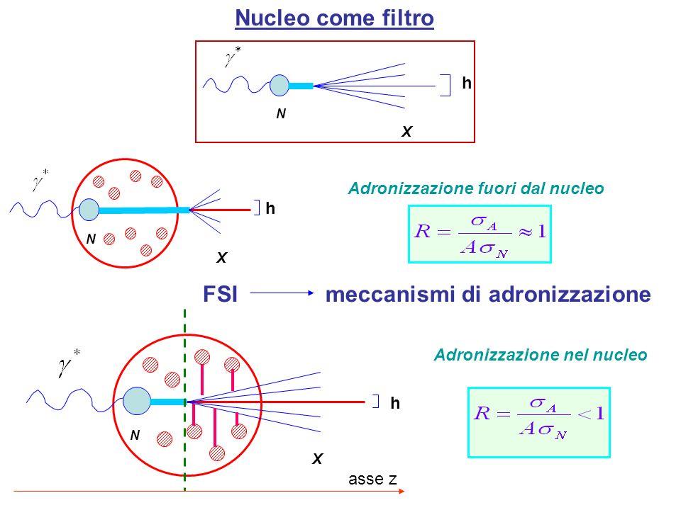 X N h asse z Nucleo come filtro FSI meccanismi di adronizzazione X N h Adronizzazione nel nucleo Adronizzazione fuori dal nucleo X N h