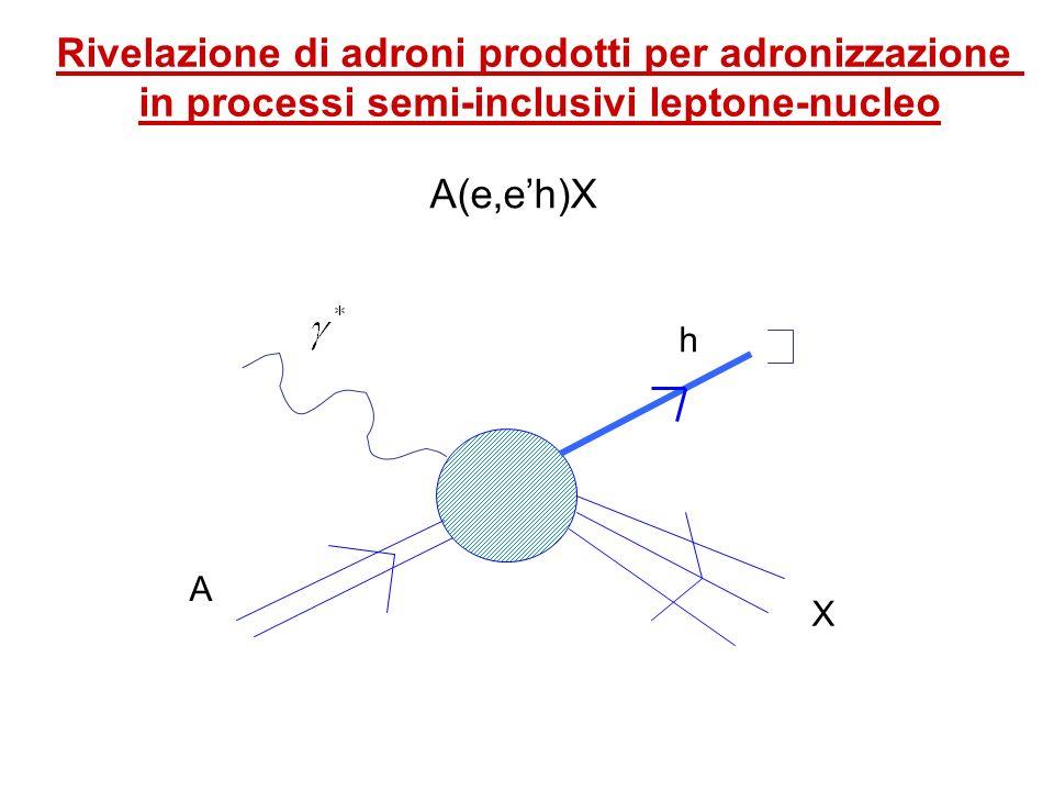 Rivelazione di adroni prodotti per adronizzazione in processi semi-inclusivi leptone-nucleo A(e,eh)X A X h