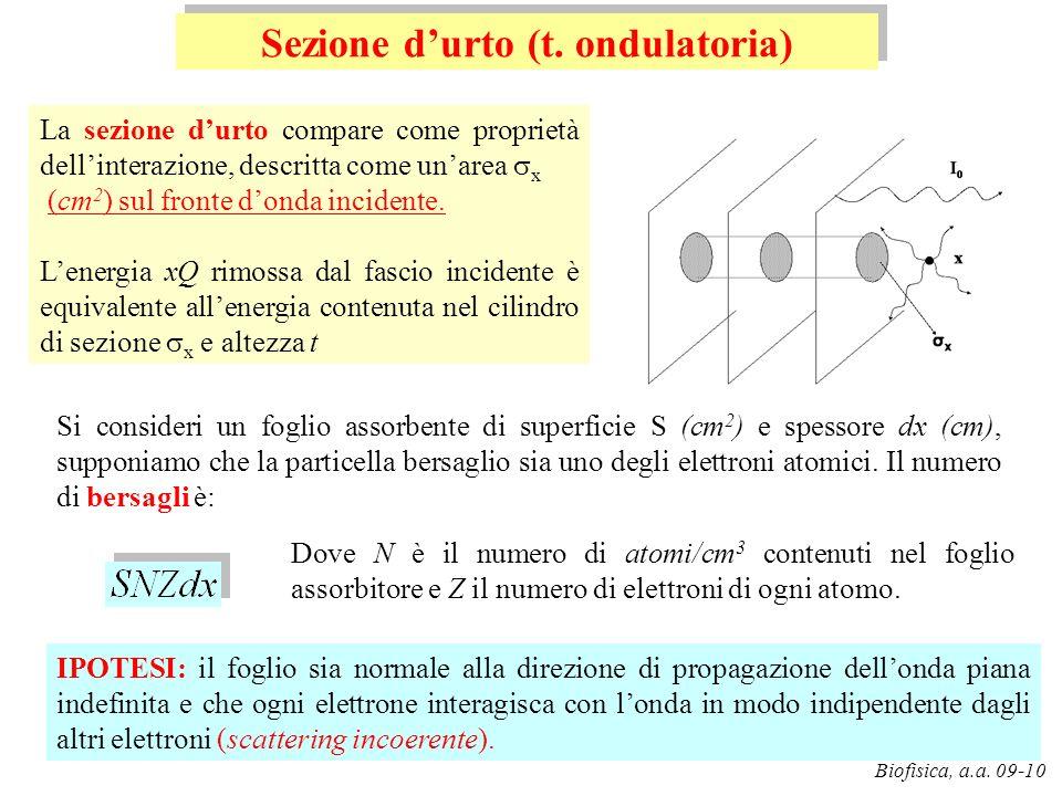 G. Pugliese Biofisica, a.a. 09-10 La sezione durto compare come proprietà dellinterazione, descritta come unarea x (cm 2 ) sul fronte donda incidente.