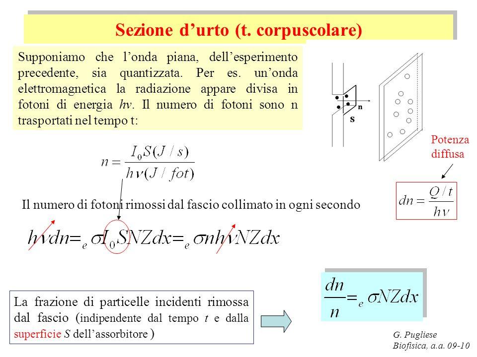 G. Pugliese Biofisica, a.a. 09-10 Sezione durto (t. corpuscolare) Supponiamo che londa piana, dellesperimento precedente, sia quantizzata. Per es. uno