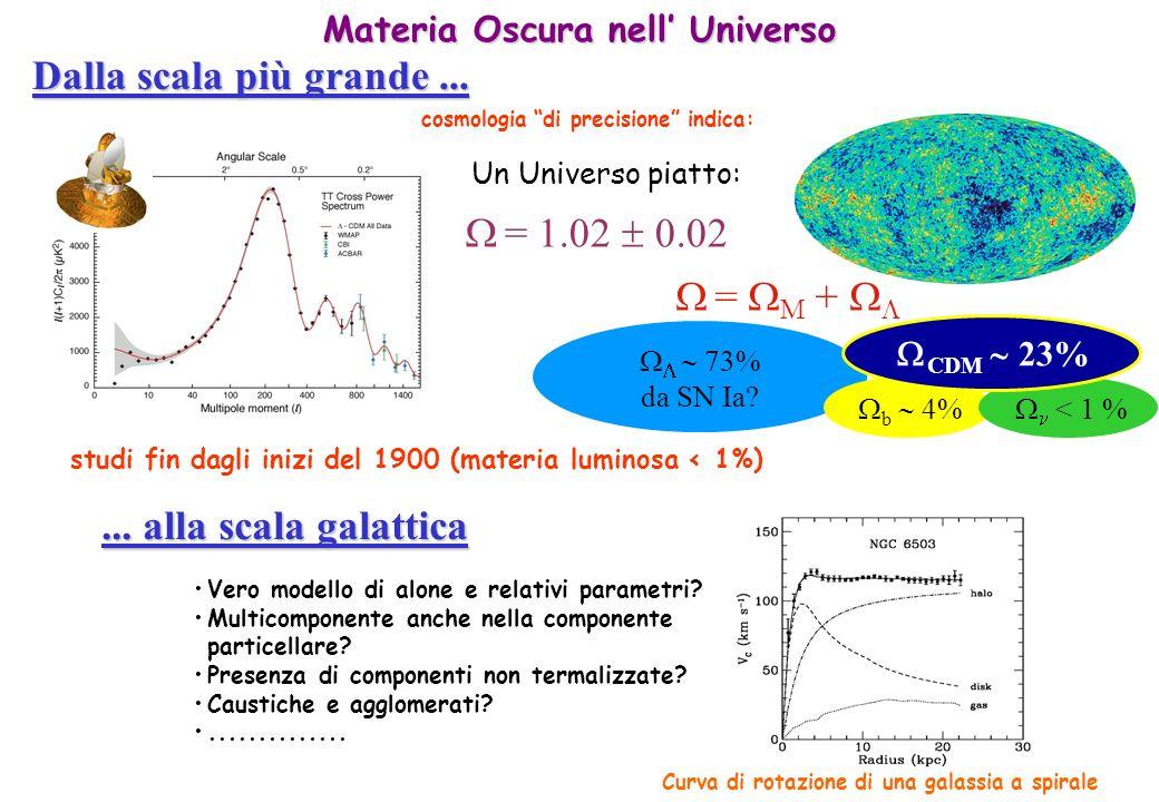studi fin dagli inizi del 1900 (materia luminosa < 1%) Un Universo piatto: = M + Dalla scala più grande... cosmologia di precisione indica:... alla sc