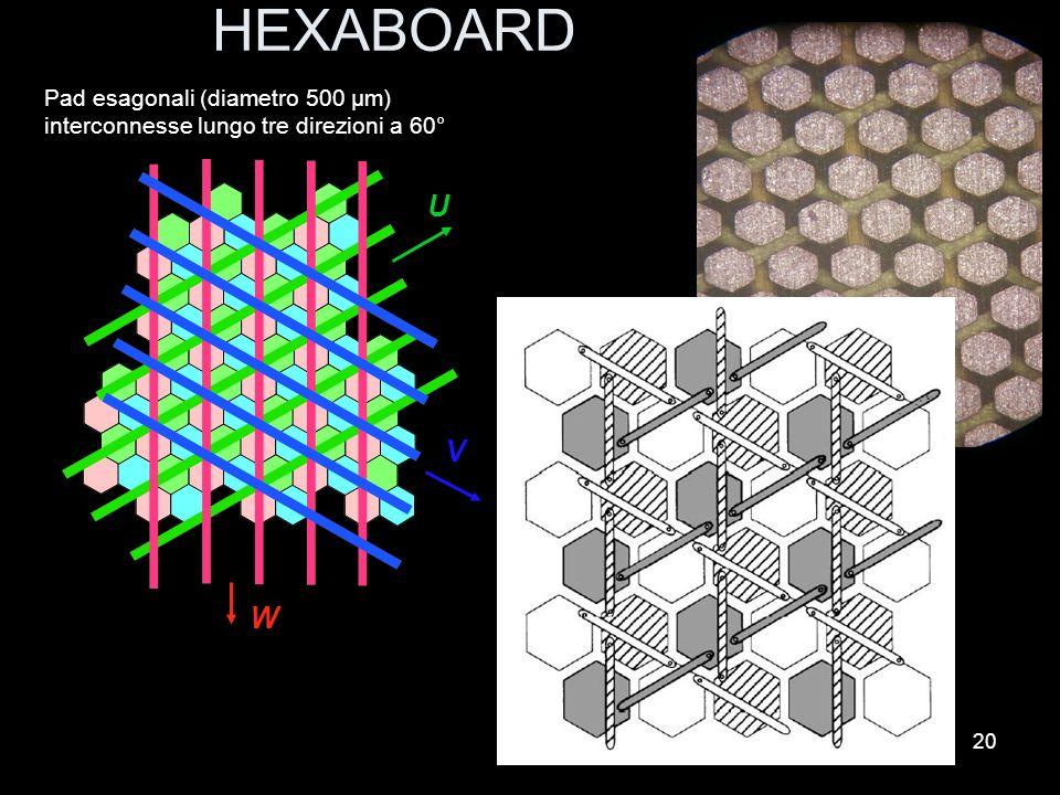 20 HEXABOARD U V W Pad esagonali (diametro 500 μm) interconnesse lungo tre direzioni a 60°