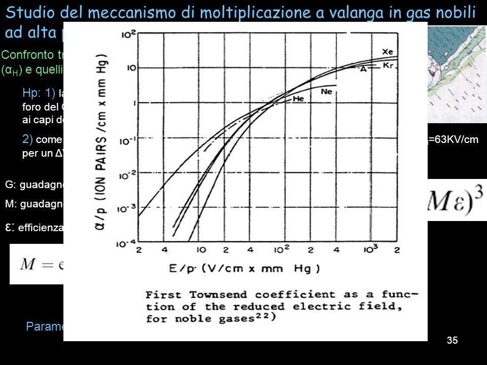 35 Studio del meccanismo di moltiplicazione a valanga in gas nobili ad alta pressione in un rivelatore 3-GEM Confronto tra i coeficienti di Townsend m