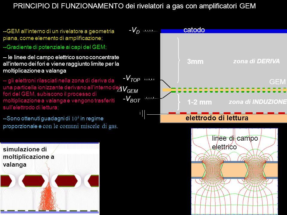 5 --GEM all'interno di un rivelatore a geometria piana, come elemento di amplificazione; simulazione di moltiplicazione a valanga linee di campo elett
