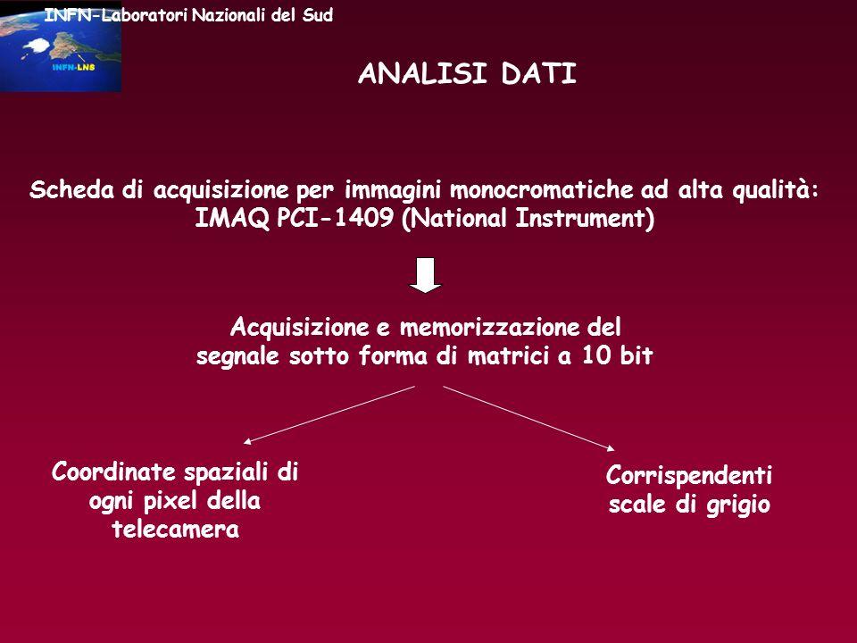 ANALISI DATI Scheda di acquisizione per immagini monocromatiche ad alta qualità: IMAQ PCI-1409 (National Instrument) Acquisizione e memorizzazione del