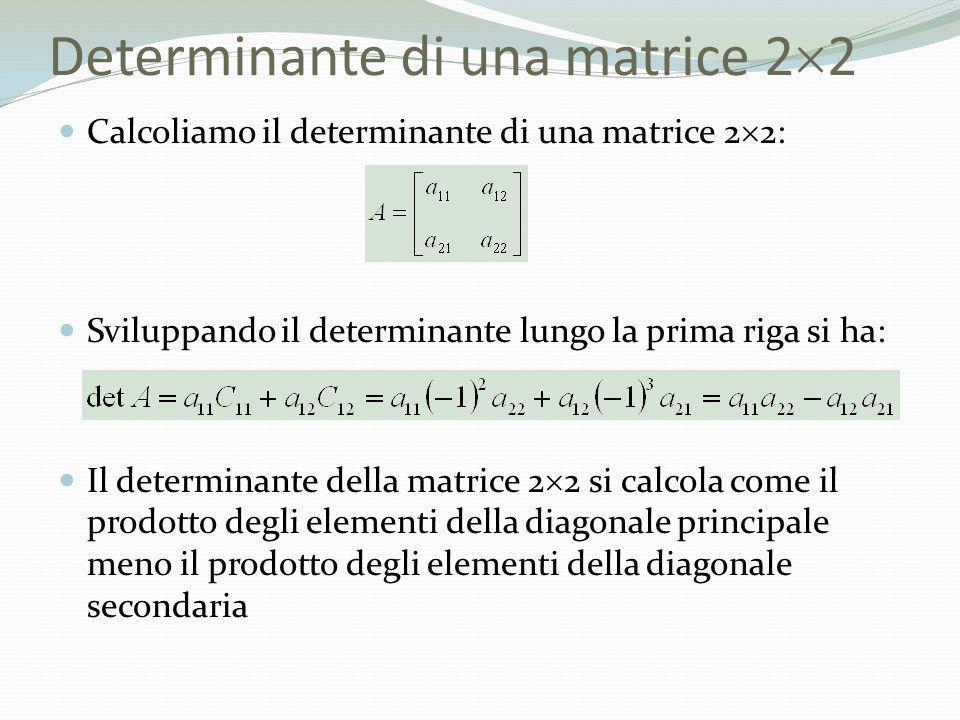 Determinante di una matrice 2 2 Calcoliamo il determinante di una matrice 2 2: Sviluppando il determinante lungo la prima riga si ha: Il determinante